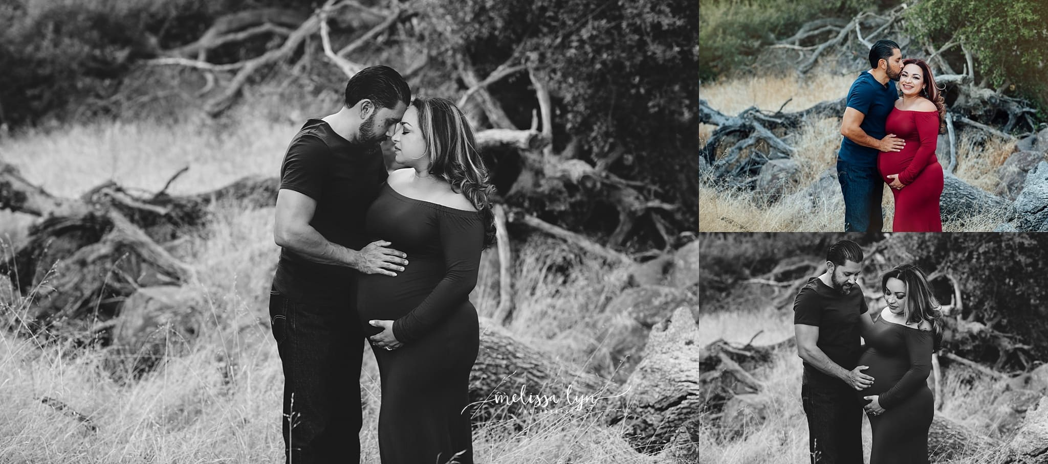 Melissa Lyn Photography - Temecula Maternity Photographer 39